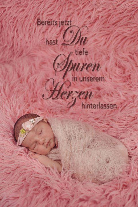 fotos-fotograf-baby-babyfotograf-neugeborenes-newborn-hildesheim-hannover-wolfsburg-braunschweig-salzgitter-ps-sd-20160814-0015_text